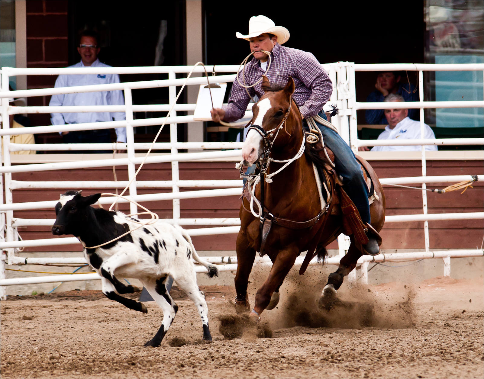 rodeo-finals-0486.jpg