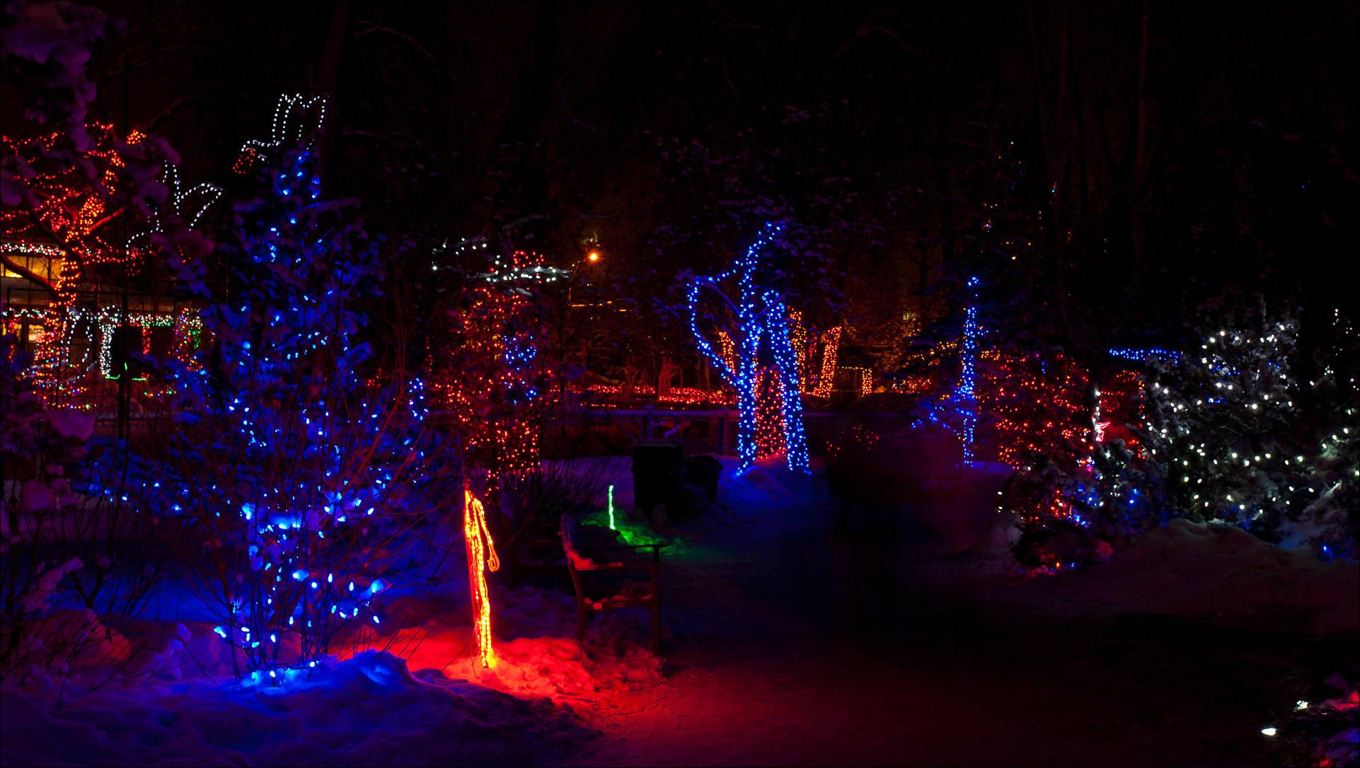 dallas zoo christmas lights 2018