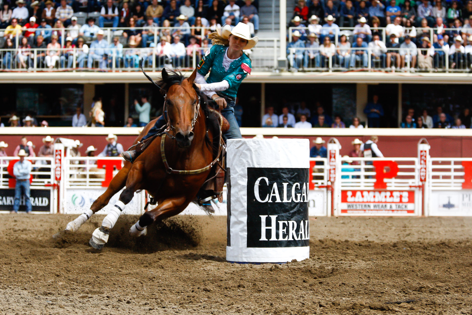 Calgary Stampede Saturday S Rodeo Christopher Martin