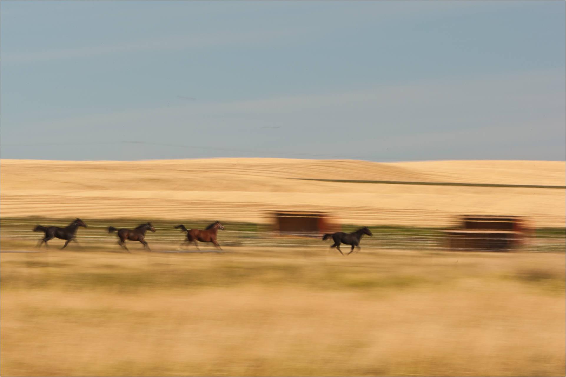 Train Christopher Martin Photography