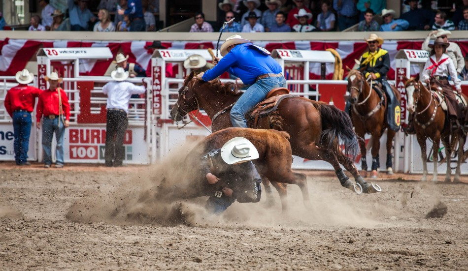 38 Photos Of The Annual Calgary Stampede In Canada Boomsbeat
