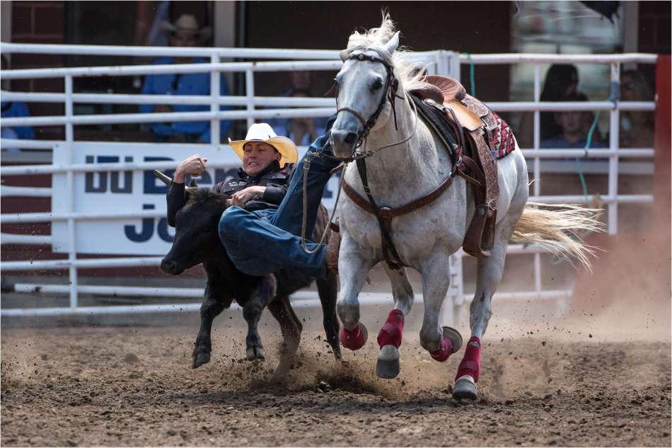 Saddle Bronc Christopher Martin Photography