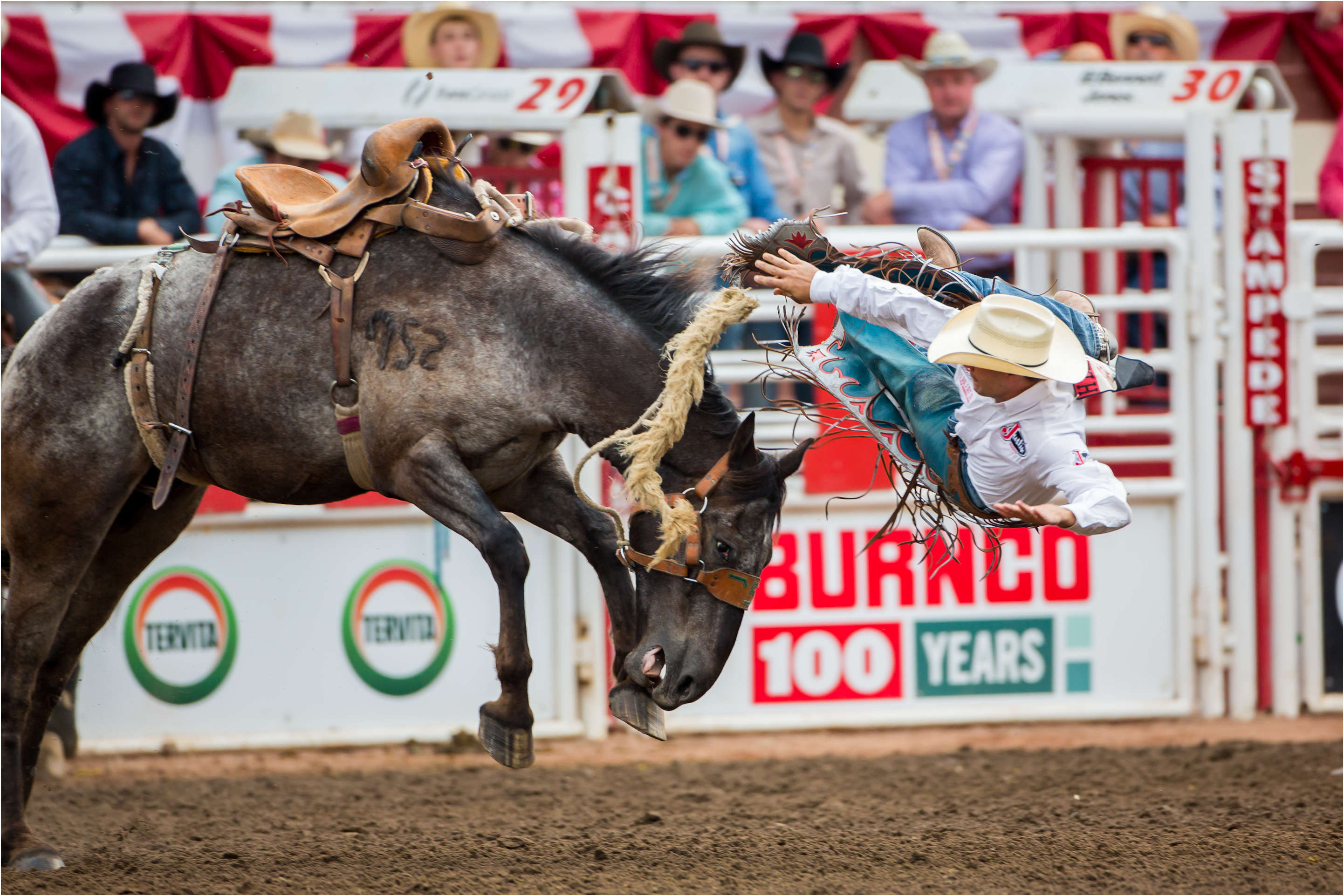 Calgary Stampede Wildcard Saturday At The Rodeo