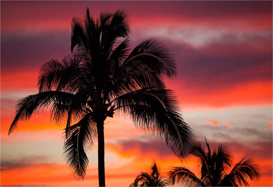 Wailua Sunset - © Christopher Martin-2539-6474