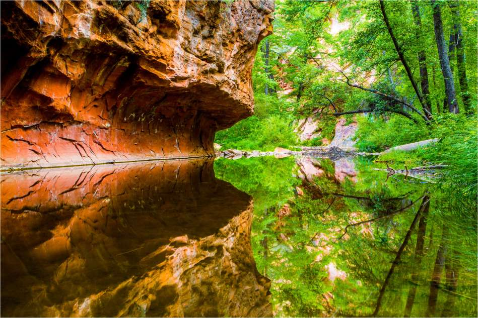 Forest and canyon reflected in Oak Creek - © Christopher Martin-1474