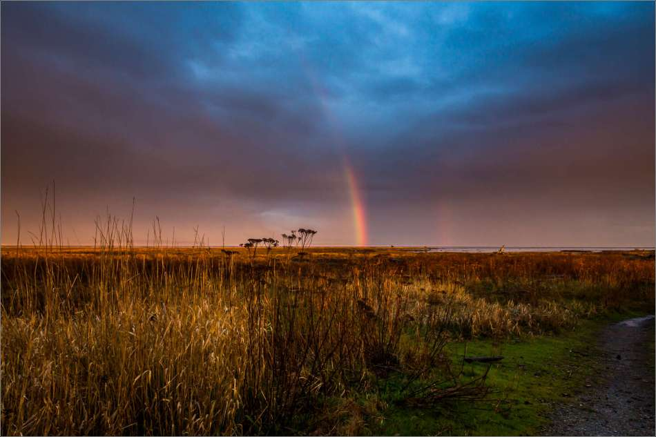 After the rain in Boundary Bay 2013 © Christopher Martin