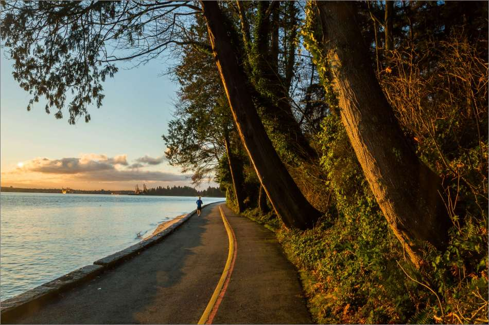 Stanley Park - morning run 2013 © Christopher Martin