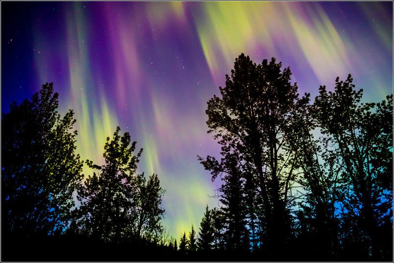 Purple horizon - 2013 © Christopher Martin