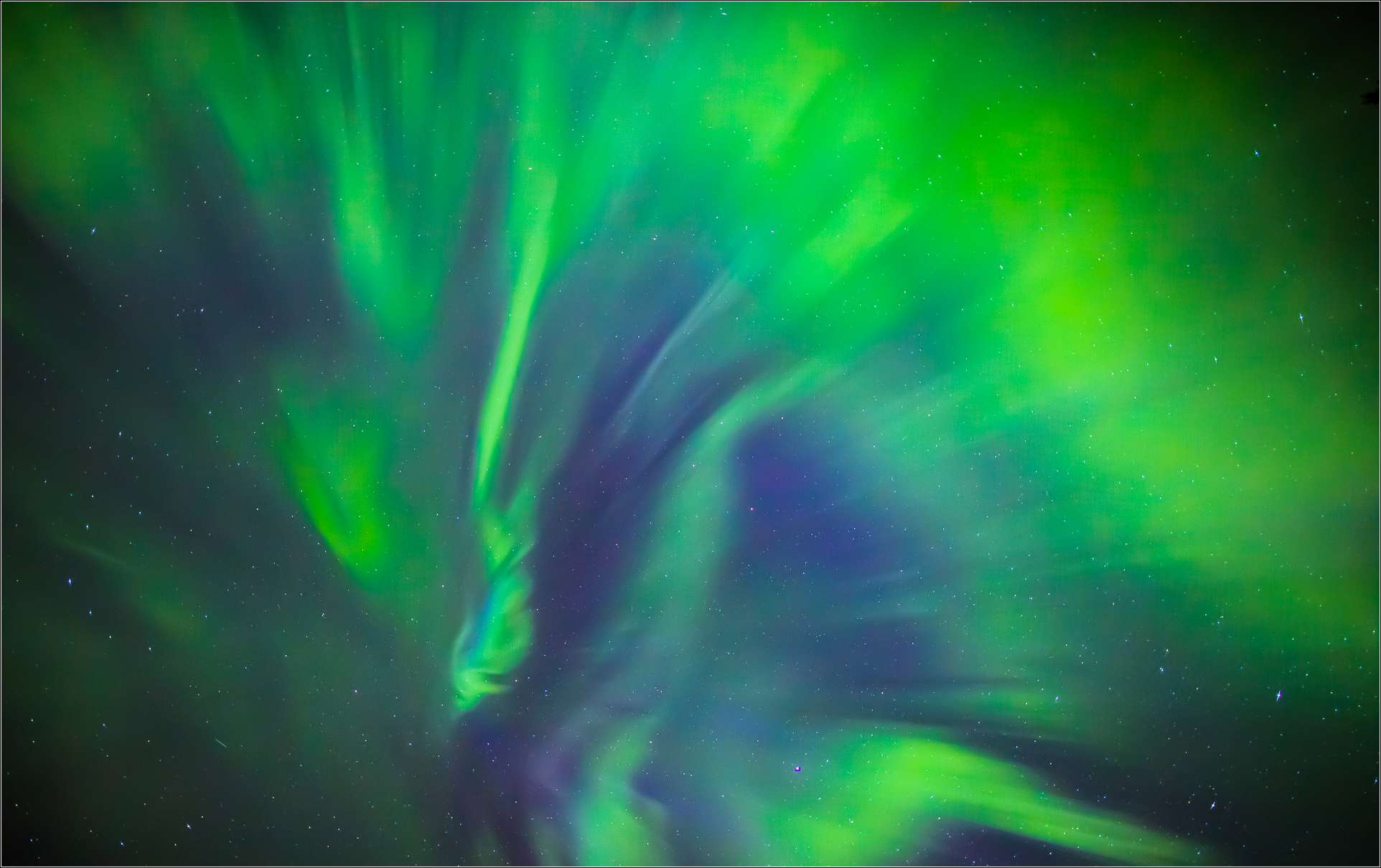 Northern Lights In Redwood Meadows Christopher Martin
