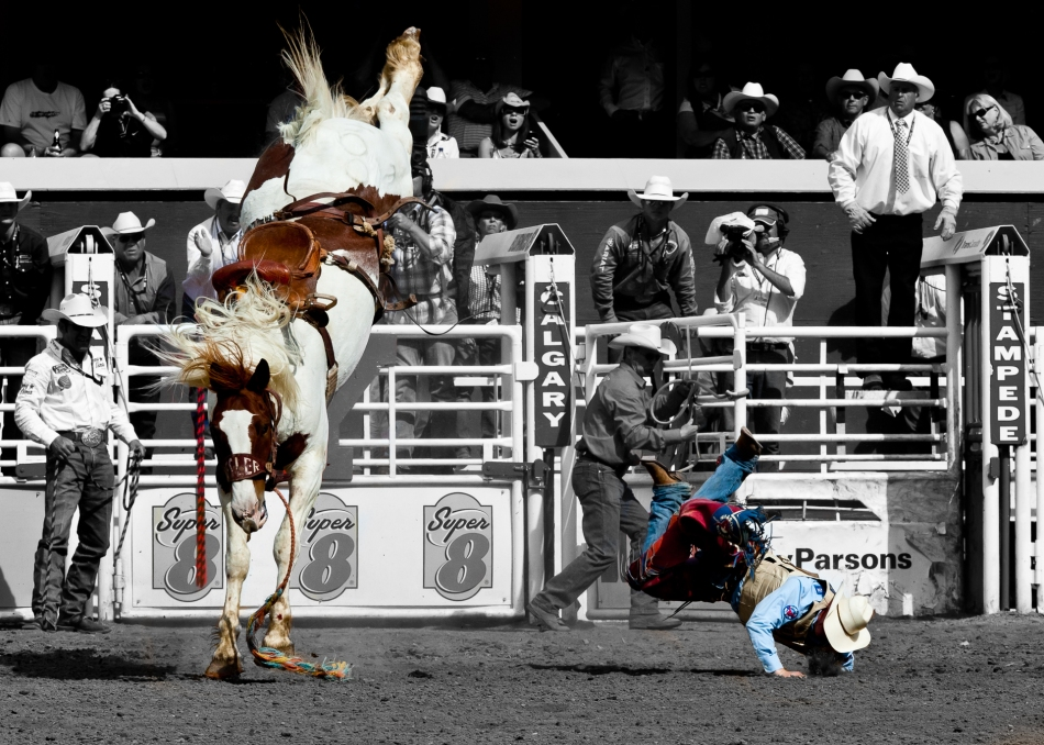 Bucked off - © Christopher Martin-0790