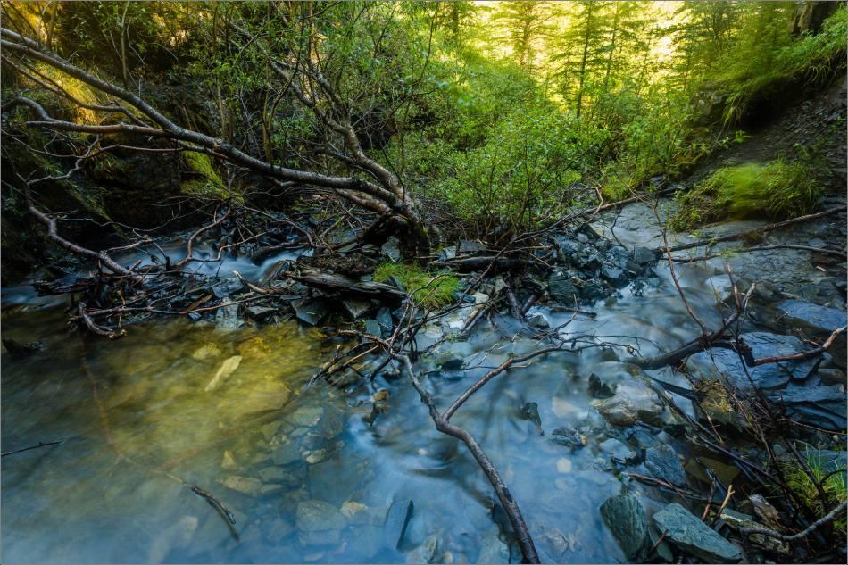 Downstream - © Christopher Martin-7731