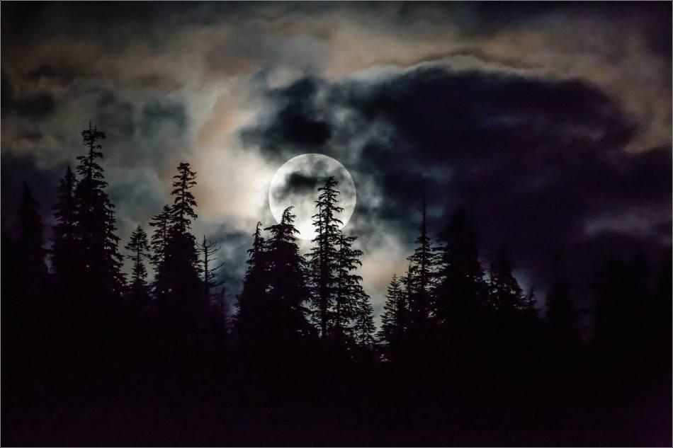 Blue Moon rising over the Khutzeymateen - 2013 © Christopher Martin