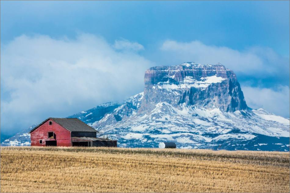 Barn and Chief - 2014 © Christopher Martin