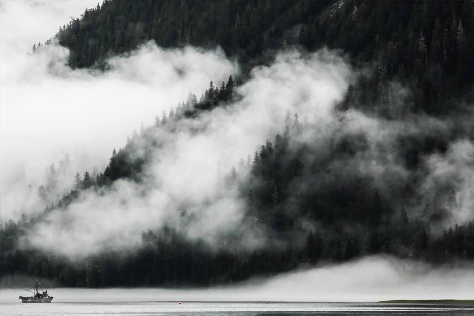 Fog and mist - 2014 © Christopher Martin