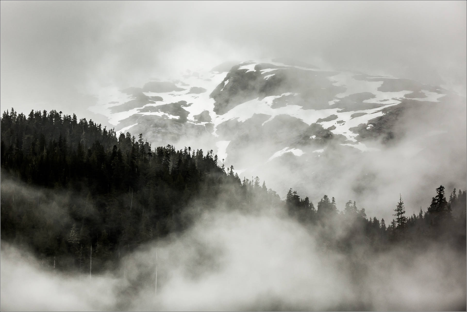 A morning of fog and mist in the Khutzeymateen | Christopher ...