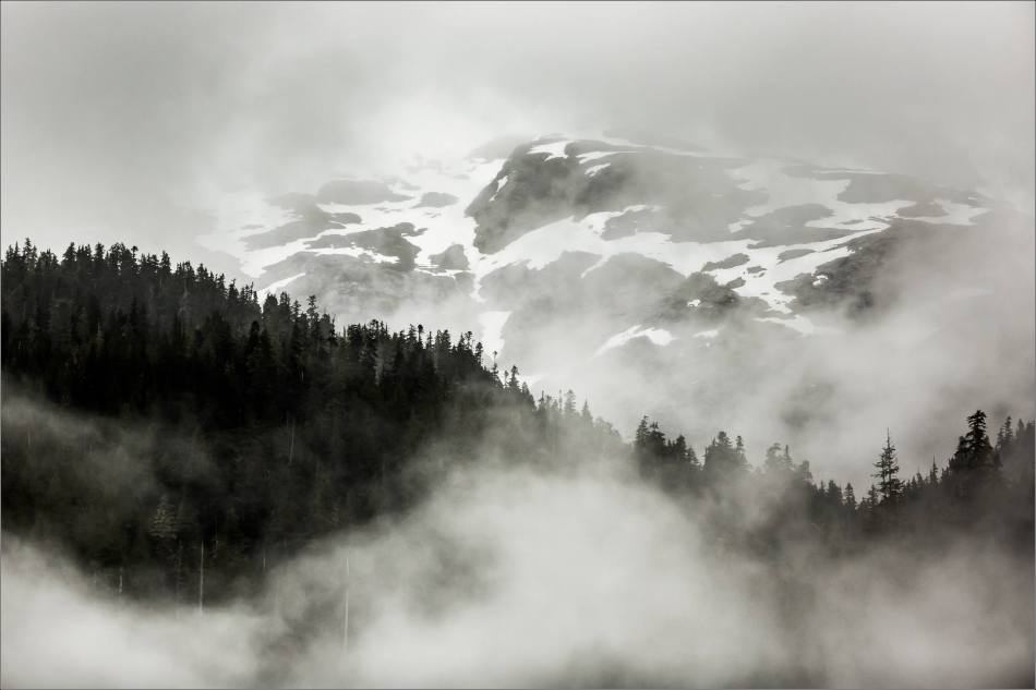Morning in the mountains of the Khutzeymateen Inlet - 2014 © Christopher Martin