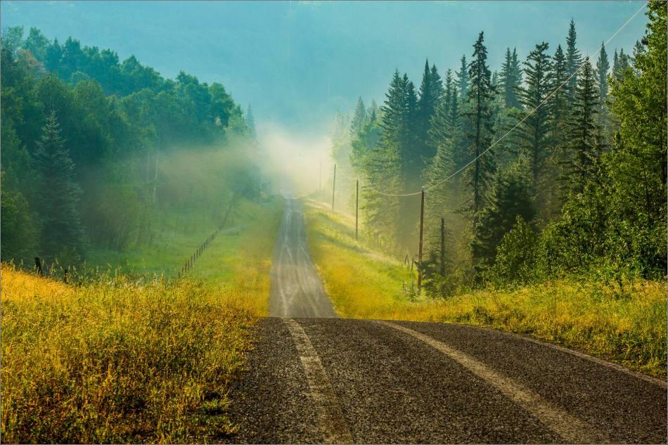 Misty backroad - 2014 © Christopher Martin
