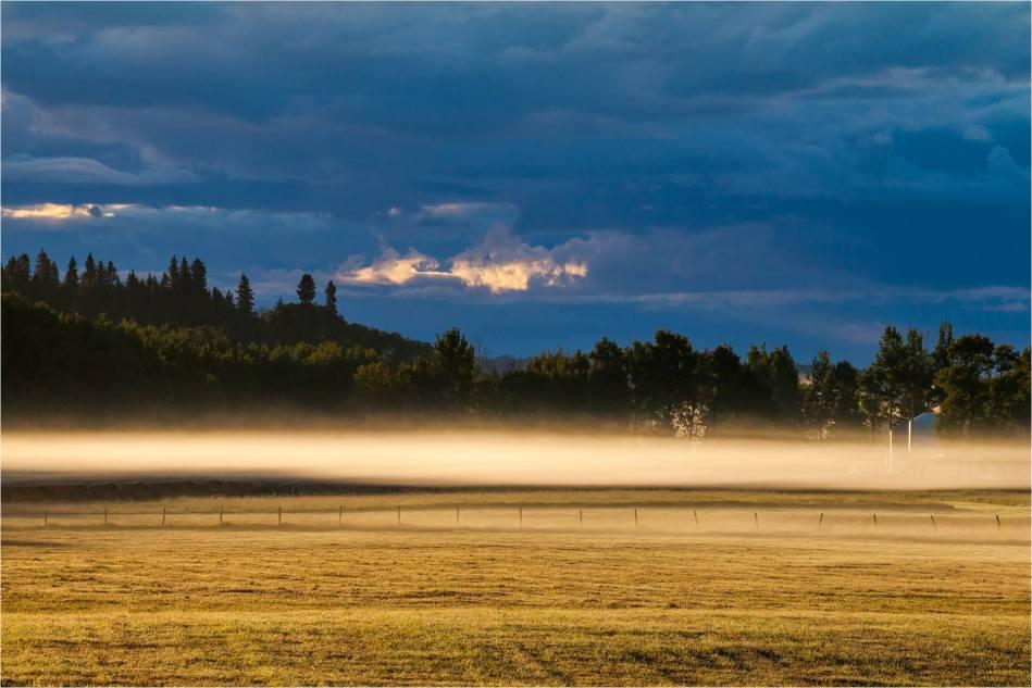 Mist illuminated - © Christopher Martin-4521