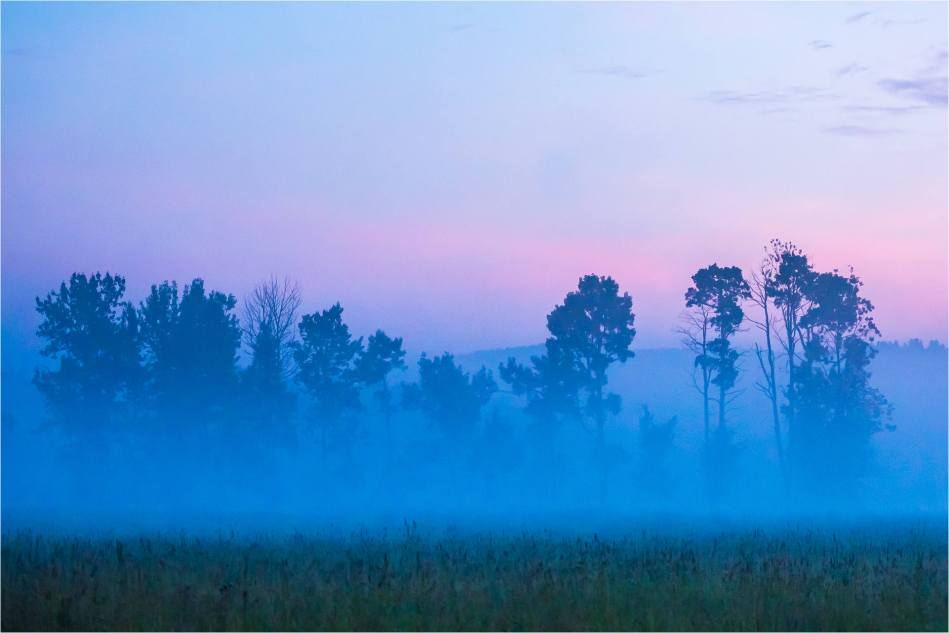 Dawn - © Christopher Martin-7397