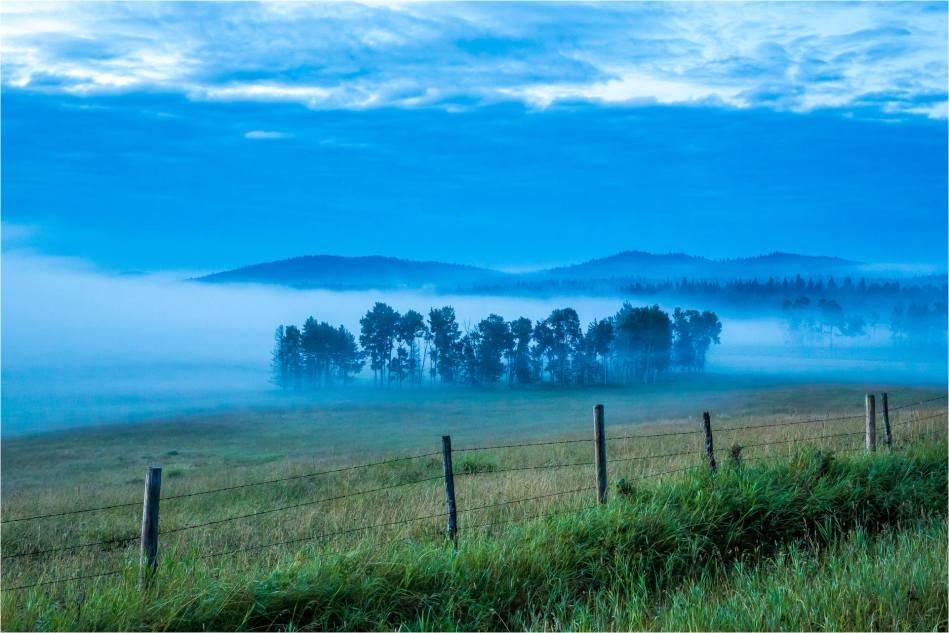 A cold mist - © Christopher Martin-7400