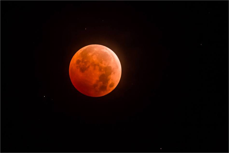 Blood Moon - © Christopher Martin-4533