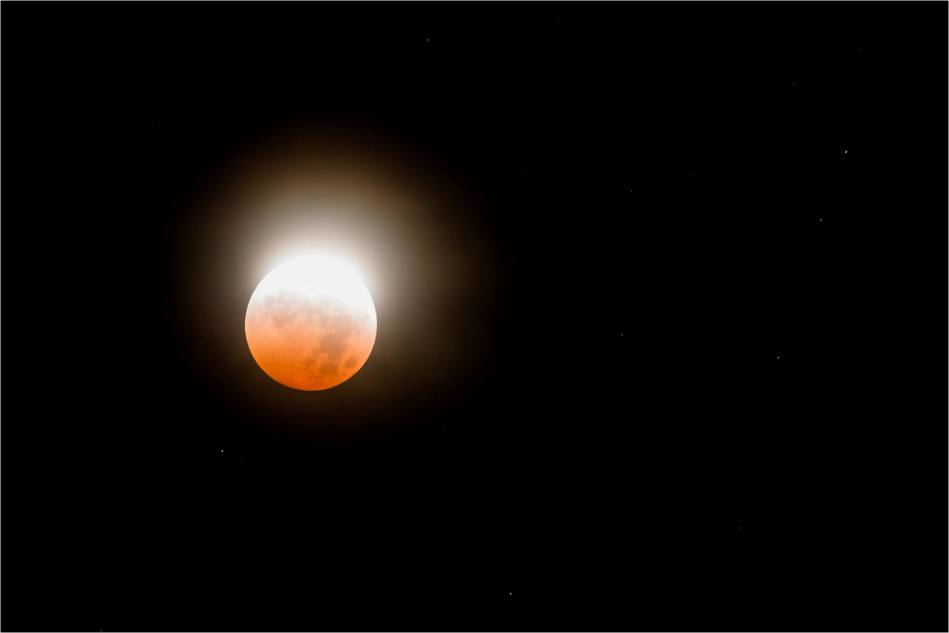 Blood Moon - © Christopher Martin-4606