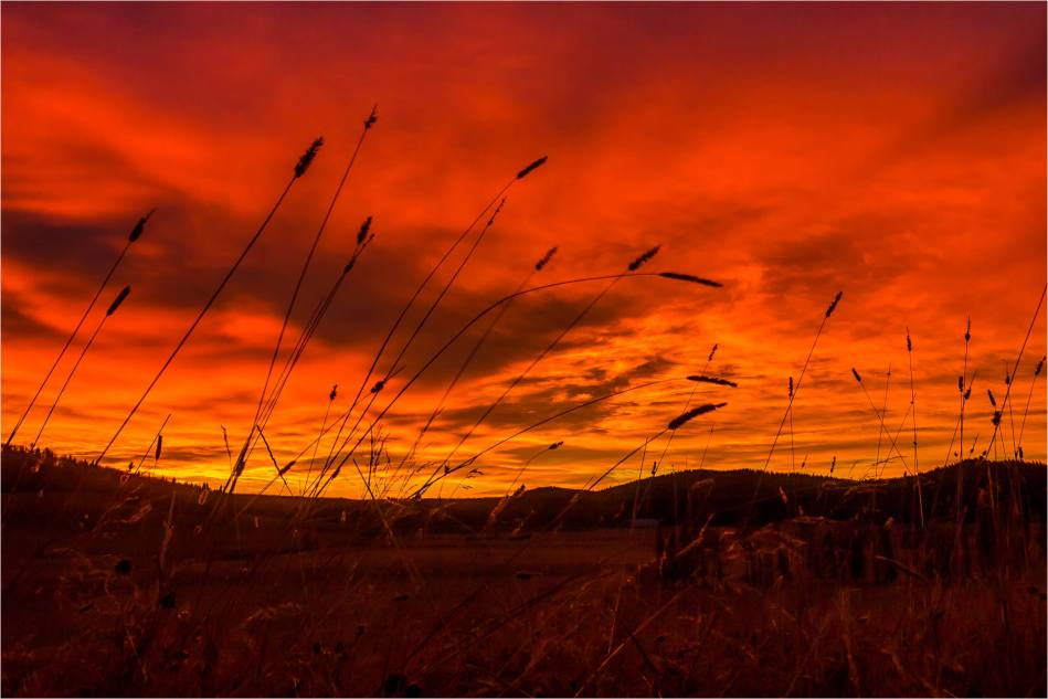 Dawn over Fawn Hills - © Christopher Martin-6605