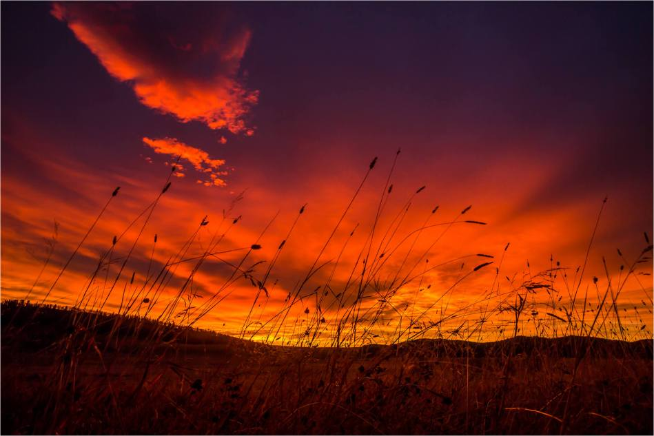 Dawn over Fawn Hills - © Christopher Martin-6608