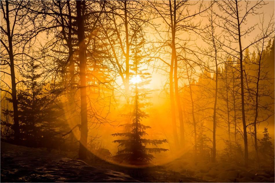 Sun halo - © Christopher Martin-9284