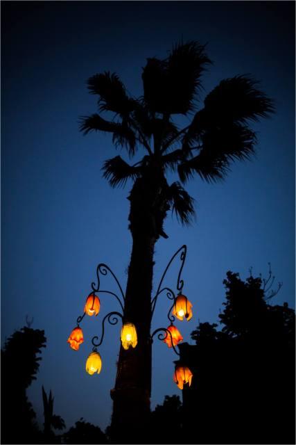 Night lights - © Christopher Martin-6948