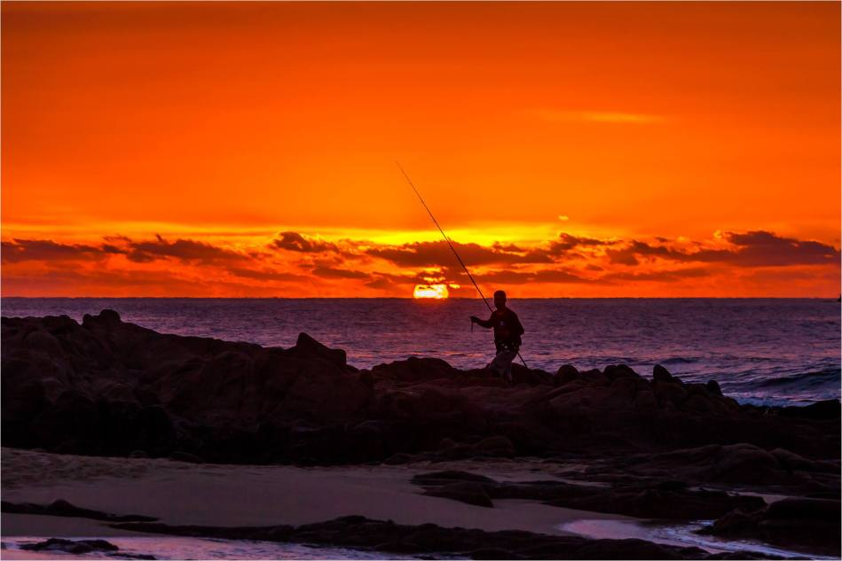 Catching the sun - © Christopher Martin-9276