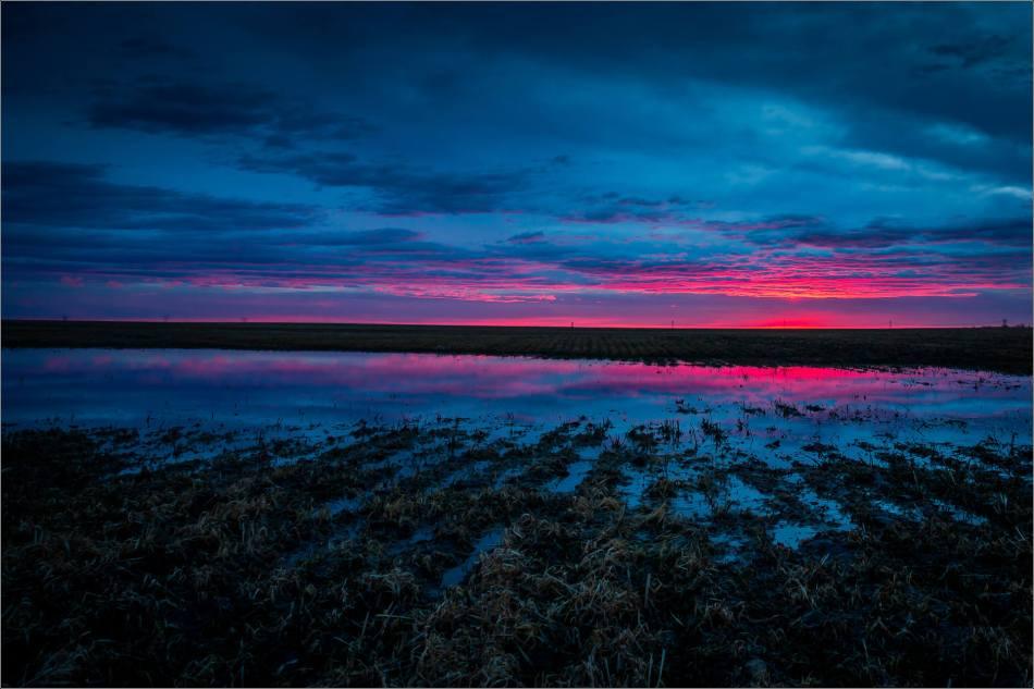 Irricana sunrise - © Christopher Martin-0799-2