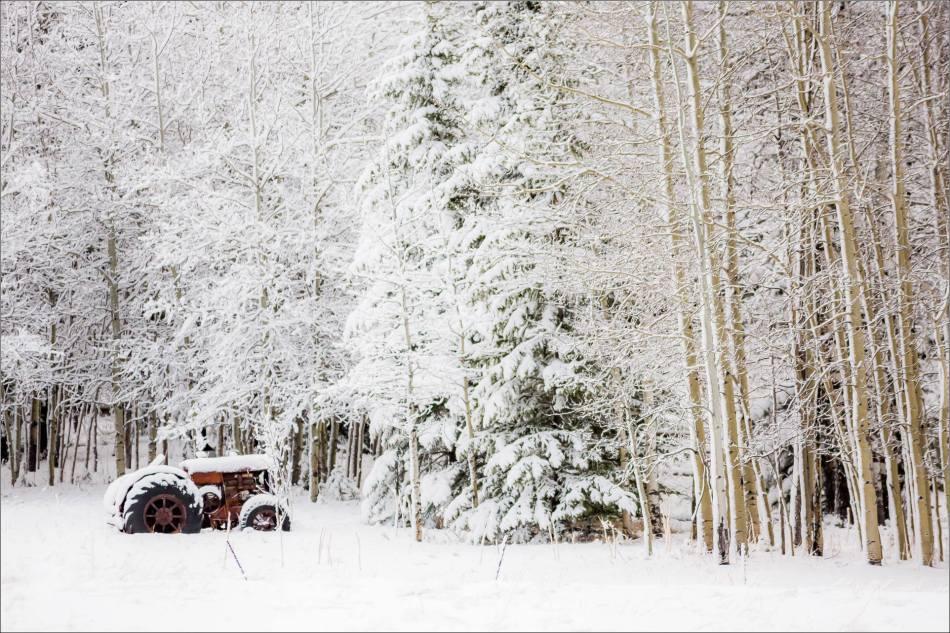 Spring snow in Bragg Creek - © Christopher Martin-6776