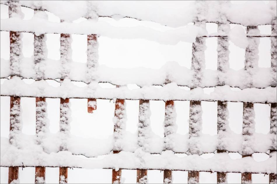 Spring snow in Bragg Creek - © Christopher Martin-6836