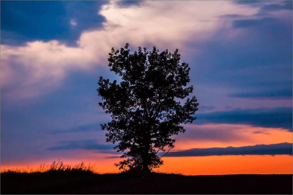 A prairie silhouette - © Christopher Martin-3998