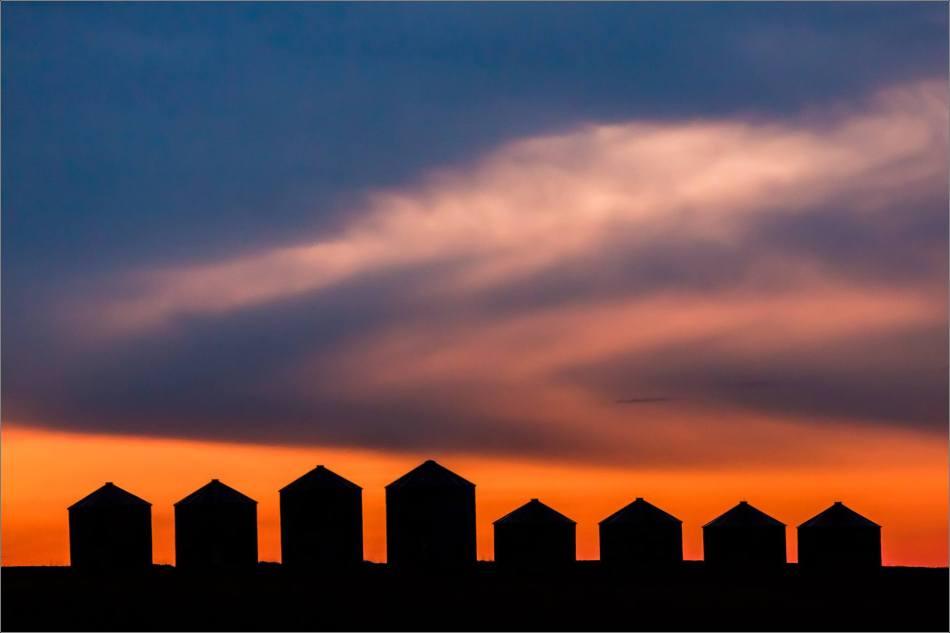 Prairie Dawn - © Christopher Martin-4027