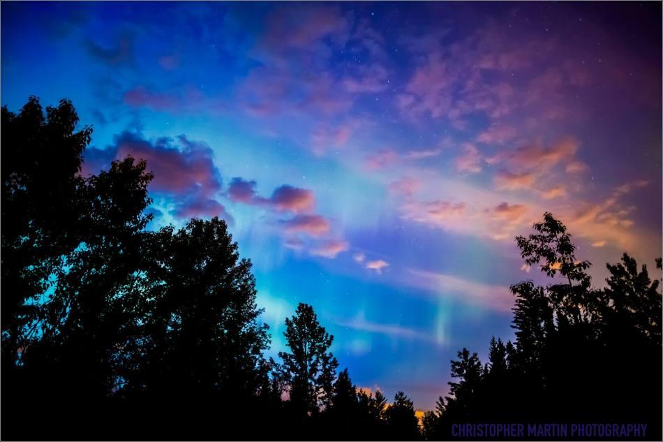 Redwood Aurora - © Christopher Martin-5612
