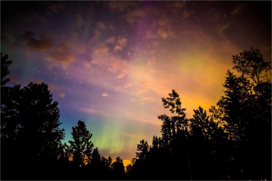 Redwood Aurora - © Christopher Martin-5643-2