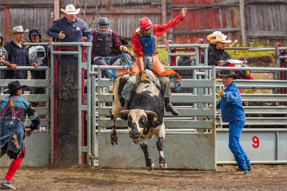 High Flying Bull Rider - © Christopher Martin-0339