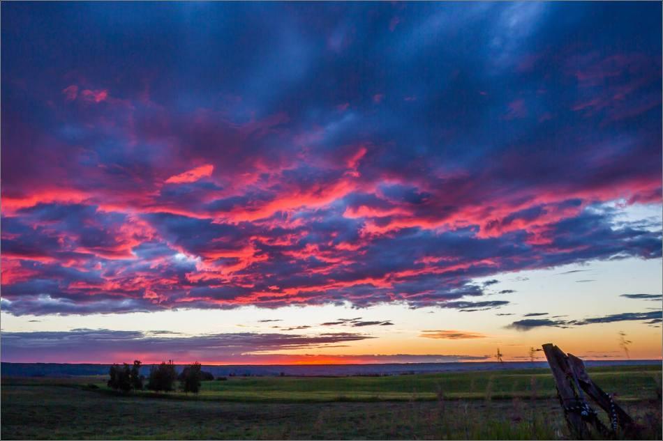 Prairie Dawn - © Christopher Martin-8716
