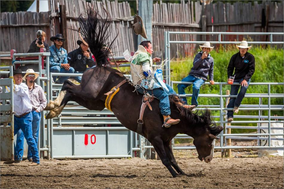 2015 Tsuu T'ina Saddle Bronc Finals - © Christopher Martin-0854