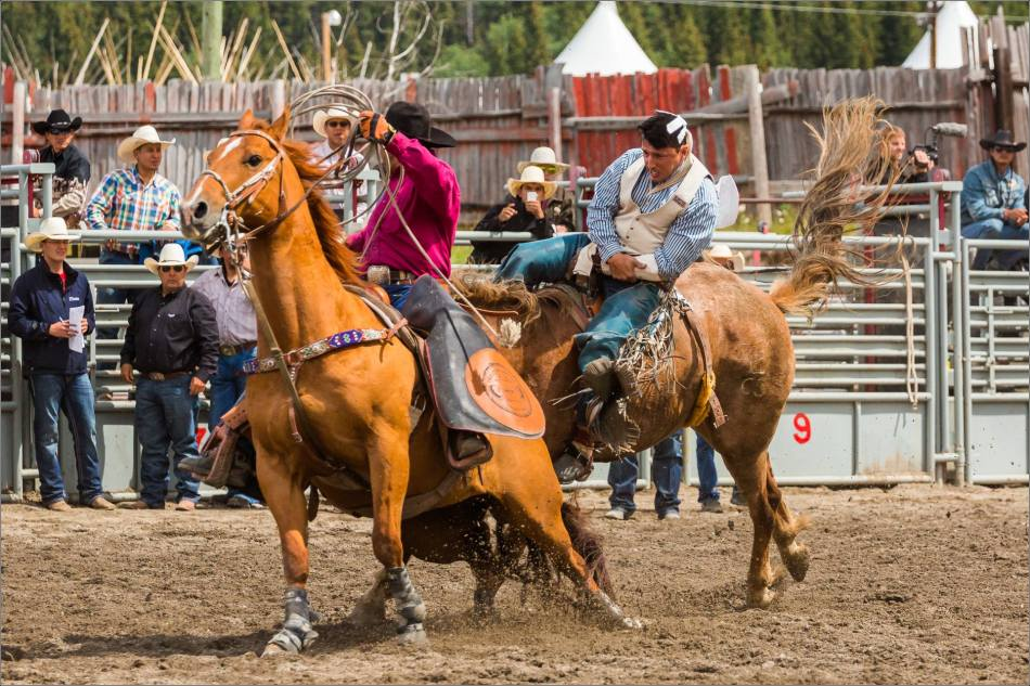 2015 Tsuu T'ina Saddle Bronc Finals - © Christopher Martin-0915