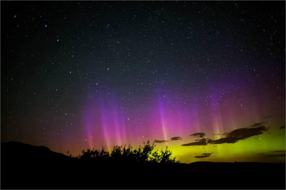 Aurora Borealis over Waterton Spring Campground - © Christopher Martin-4127