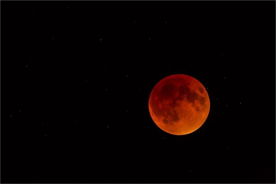 Super blood moon - © Christopher Martin-0337