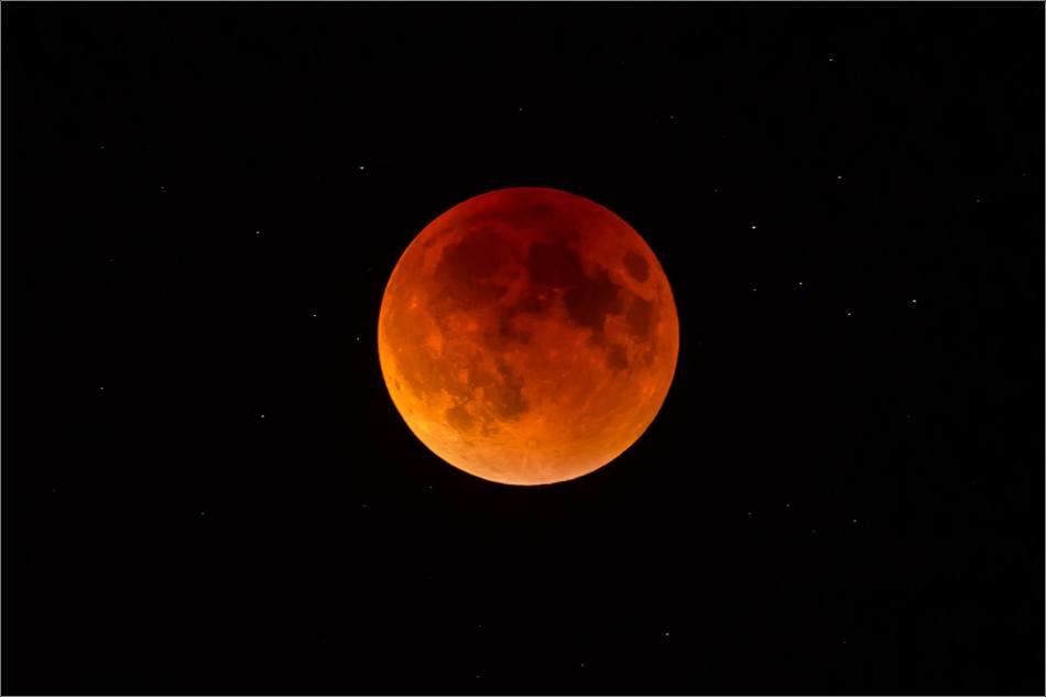 September's super blood moon - © Christopher Martin-0370