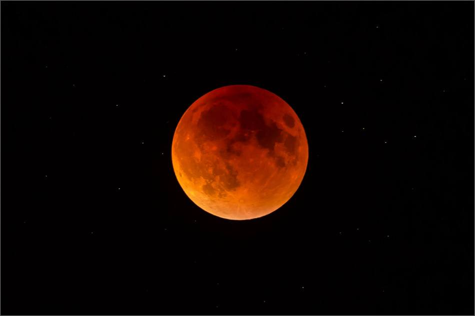 September's super blood moon - © Christopher Martin-0370