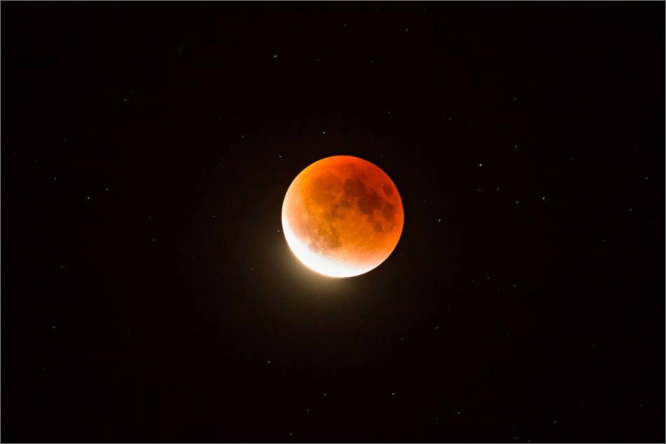 Super blood moon - © Christopher Martin-0413