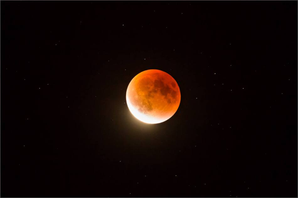 Super blood moon - © Christopher Martin-0413