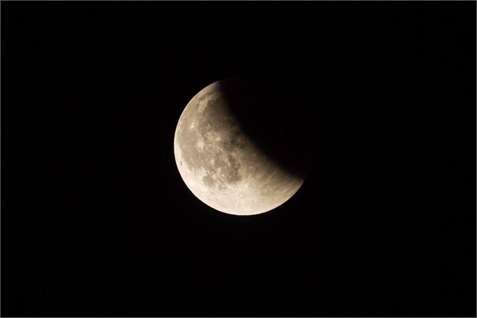 Super blood moon - © Christopher Martin-0468