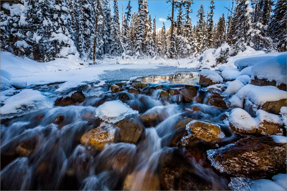 Boom Creek dressed for winter - © Christopher Martin-2829